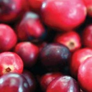 cranberry_square